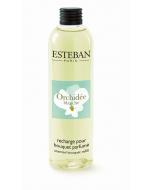 Nachfüllflasche Esteban Orchidée Blanche