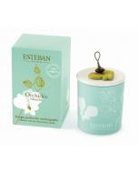 Nachfüllbare dekorative Duftkerze Esteban Orchidée Blanche